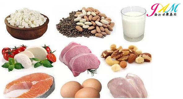 蛋白质最高的食物.jpg