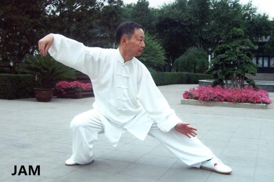 强身健体 弘扬国粹——太极拳 项目 第5张
